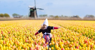 De ultieme route voor een rondreis Nederland