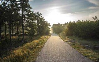Waddeneilanden - Ameland Fietspad
