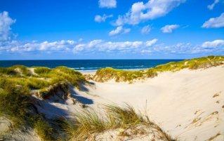 Noordzeekust - Duinen