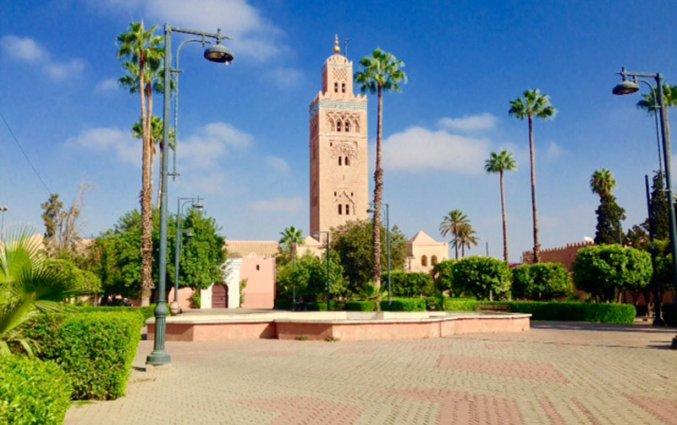 Korting Surprise Verrassend Marrakech