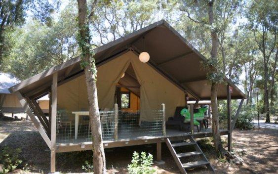Paradu Eco Resort 1