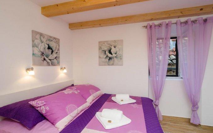 Appartementen Lavender Garden 1
